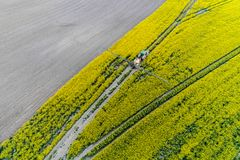 Aerial view on the tractor spraying the herbicide. On the yellow colza field Stock Photo