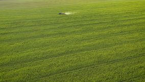 Aerial view of tractor treats agricultural plants on the field. Tractor treats agricultural plants on the field, top view from height stock video