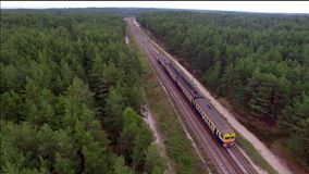 Aerial view of train over railway in the forest. stock video