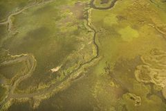 Aerial view of tributary Stock Images