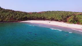 Aerial view tropical beach in india, Goa. Flying on drone, over Indian ocean and coconut palms stock footage