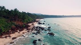Aerial view tropical beach in india, Goa. Flying on drone, over Indian ocean and coconut palms stock video