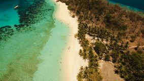 Aerial view beautiful beach on a tropical island Malcapuya. Philippines. Aerial view of tropical beach on the island Malcapuya, Palawan, Philippines. Beautiful stock video