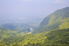 Aerial View Tropical Forest royalty free stock photos