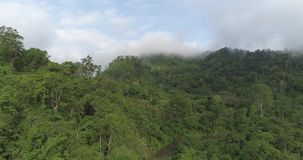 Aerial view of tropical green forest with river. Beautiful natural scenery of river in Asia tropical green forest with mountains in background, aerial view drone stock footage