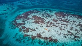 Aerial view of tropical island at Glover`s Reef Atoll in Belize with kayaks royalty free stock photos
