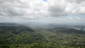 Aerial view of tropical rainforest on the shore of Gatun  Lake. Along the Panama Canal route stock footage