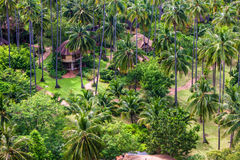 Aerial view of a tropical resort. With palms, Railay, Thailand Royalty Free Stock Image