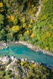 Aerial view of turquoise mountain river. Surrounded with autumn colored forest Royalty Free Stock Photo