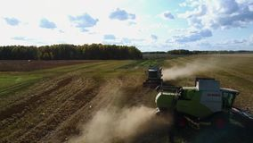 Aerial view of two combine harvester gathering ripe wheat. Harvesting grain field stock video footage