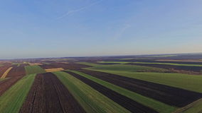 Aerial view of the Ukrainian fields stock video