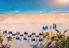 Aerial view of umbrellas, palms on the sandy beach of blue sea. At sunset. Summer travel in Zanzibar, Africa. Tropical landscape with palm trees, parasols royalty free stock photos