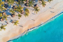 Aerial view of umbrellas, palms on the sandy beach and sea. Aerial view of umbrellas, palms on the sandy beach, people, blue sea with waves at sunset. Summer royalty free stock photos