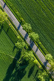 Aerial view of  village road and green harvest fields Stock Images