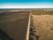 Aerial view of vineyard in Kingston on Murray in winter. Riverland, South Australia Royalty Free Stock Images