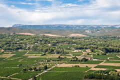 Aerial view of the vineyards of Bandol Stock Photography