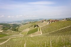 Aerial view of the vineyards of Barbaresco, Piedmont. The splendid vineyards of Barbaresco, in the province of Cuneo in the Italian region of Piedmont royalty free stock photo