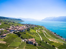 Aerial view of Vineyards in Lavaux region - Terrasses de Lavaux Stock Photos