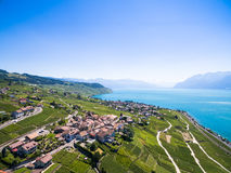 Aerial view of Vineyards in Lavaux region - Terrasses de Lavaux Royalty Free Stock Images