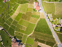 Aerial view of Vineyards in Lavaux region - Terrasses de Lavaux Royalty Free Stock Photo