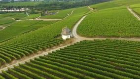 Aerial view of vineyards stock video footage