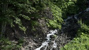 Aerial view of Waterfall in the Caucasus mountains surrounded by many pine trees and shrubs, ending into a mountain. Waterfall in the Caucasus mountains stock video footage