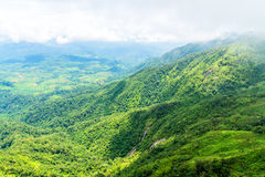 Aerial view of waterfall in green mountain ridge in rain forest on cloudy day.  Stock Photos