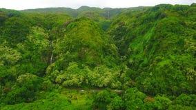Aerial view of Waterfalls on the Hana Highway