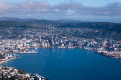 Aerial View of Wellington City Royalty Free Stock Photo