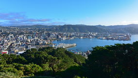 Aerial view of Wellington city Royalty Free Stock Image
