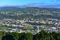 Aerial view of Wellington city Royalty Free Stock Photography