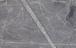Aerial View of the Whale Nazca Lines. In the Peruvian Desert royalty free stock image
