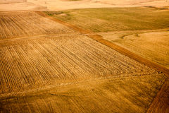 Aerial View of Wheat Farms Royalty Free Stock Image