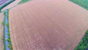 Aerial view of wheat field stock footage