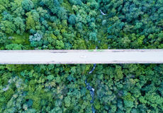 Aerial view of a white car crossing a tall bridge, green forest Royalty Free Stock Photos