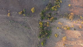 Aerial view of wildlife trails stock video