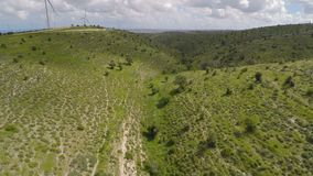 Aerial view of wind turbines and olive trees on hills of conservation area. Stock footage stock video