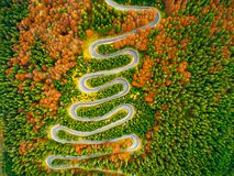 Aerial view of winding road through autumn colored forest Stock Photos