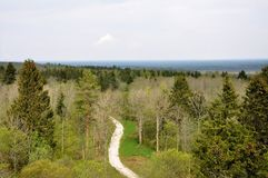 An aerial view of winding road. In the woods Stock Image