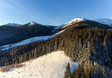 Aerial view of winter forest covered in snow. drone photography - panoramic image stock image