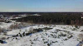 Aerial view of winter frozen forest covered in snow stock video footage