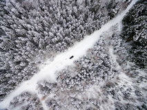 Aerial view of winter forest from drone. Aerial view of winter forest covered in snow. drone photography Stock Photos