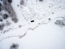 Aerial view of winter forest from drone Royalty Free Stock Images