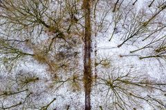 Aerial view of the winter forest with path from above royalty free stock image