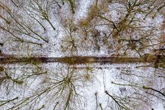 Aerial view of the winter forest with path from above stock image