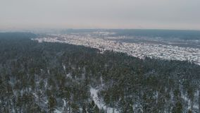 Aerial view of winter forest. stock video footage