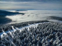 Aerial view of winter forest Stock Photography