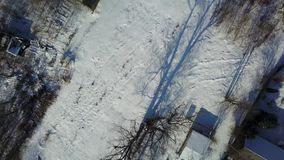 Aerial view of winter frozen forest covered in snow stock video