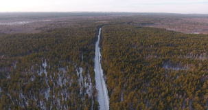 Aerial view of the winter nature in the Siberian forest stock video footage