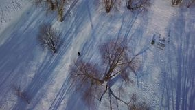 Aerial view on winter park with cross country skiing slope. stock footage